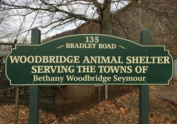 Animal_Shelter_Sign